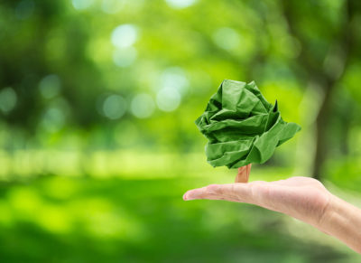 Green Myths Persist Among the Public, Says Survey